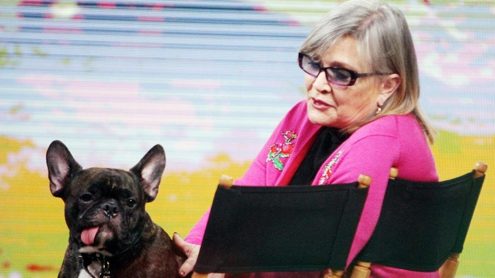 Episode VIII: Le chien de Carrie Fisher au casting ?!
