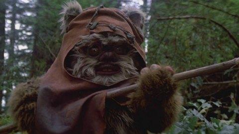 Une nouvelle série Star Wars sur les Ewoks pour Disney +?